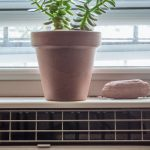 Indoor air conditioner with a potted plant on top of it.